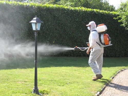 fumigacion control de plagas