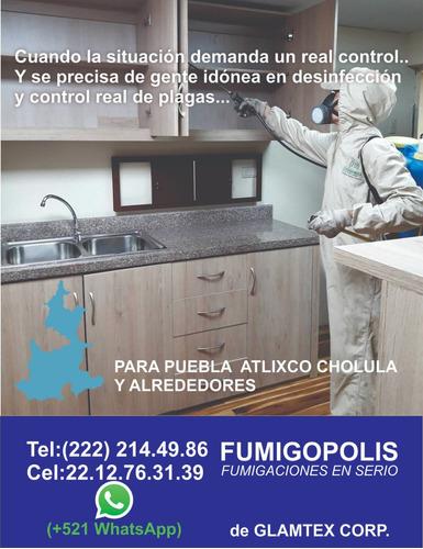 fumigacion cucarachas ratas hormig pulgas moscas sancud $350