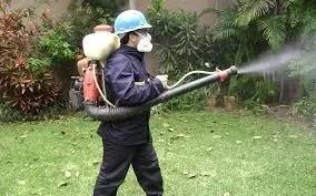 fumigación de casas y empresas