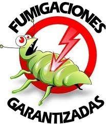 fumigacion de chiripas cucarachas termitas ratones caracas