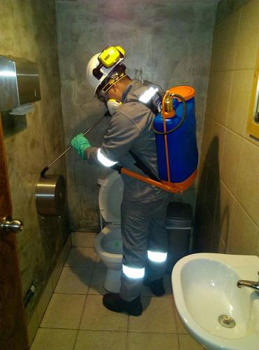 fumigación, desratización y limpieza de cisternas de agua.