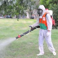 fumigación - fumigador - limpieza de tanques certificado