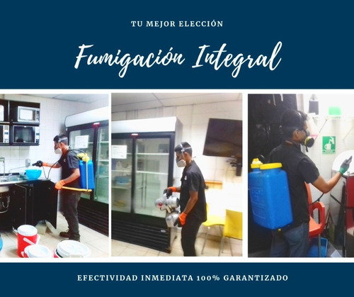 fumigacion integral residencial
