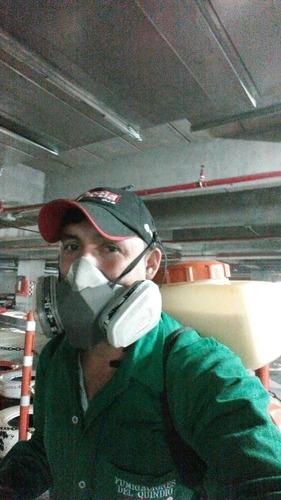fumigación preventiva quindiana