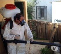 fumigacion - sanitizacion - control de ratones