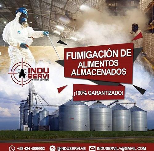fumigación, servicio de desinfección, sanitizacion, covid 19