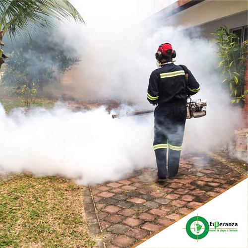 fumigacion termonebulizador