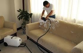 fumigacion y control de plagas