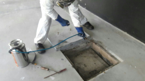fumigacion y control de todo tipo de plagas