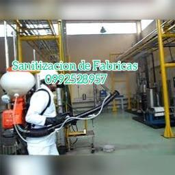 fumigacion y desinfeccion  0939865074 amonio cuaternario