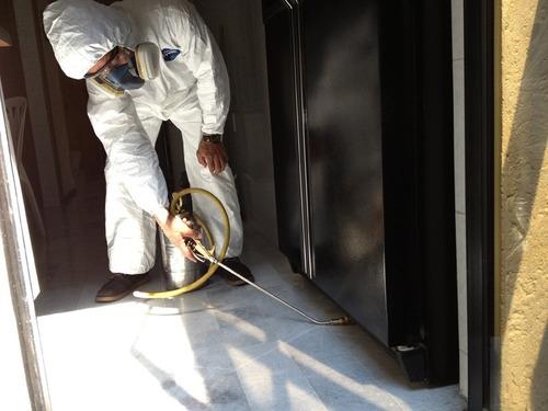 fumigación y manejo integral de plagas en puebla