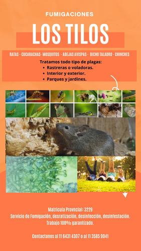 fumigacion/control de plagas/ cucarachas mosquitos hormigas