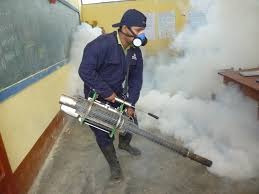 fumigaciones comejen (termitas) y polillas garantizadas