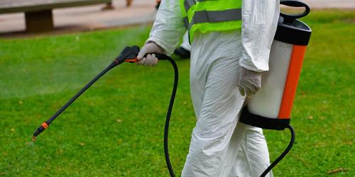 fumigaciones control de plagas