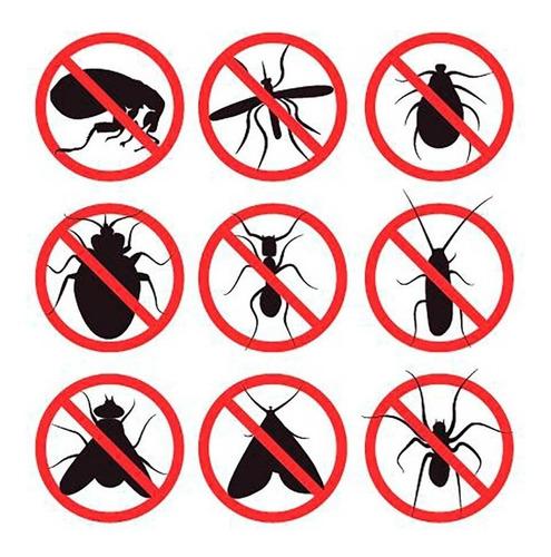 fumigaciones control de plagas desinfecciones roedores
