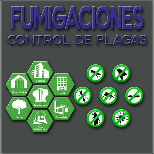 fumigaciones - control de plagas - desratizaciones