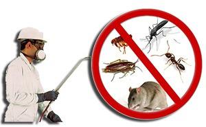 fumigaciones control de plagas. las 24 hrs