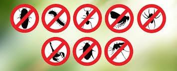 fumigaciones ,control de plagas,,fontaneria,mantenimiento,