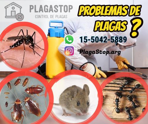 fumigaciones cucarachas ratas mosquitos pulgas hormigas