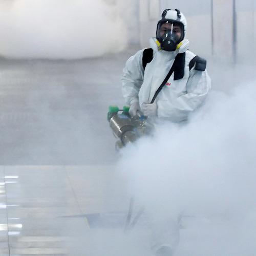 fumigaciones - desinfeccion  -  control de plagas