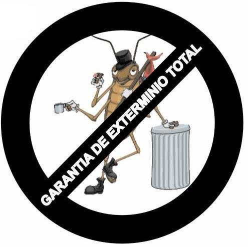 fumigaciones ecologicas  sin venenos ni olor 100% efectivas!