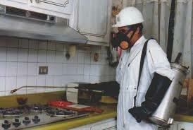 fumigaciónes especiales con productos importados antialergic