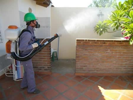 fumigaciones. ing. agronomo. control de plagas. desinsecta.