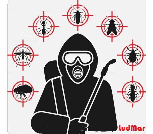 fumigaciones ludmar -cucarachas-ratas-hormigas-certificados