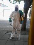 fumigaciones mateo entrega de certificados capital y gba