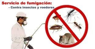fumigaciones proserv c.a elimin chiripas autoriz minis sanid