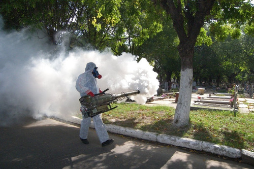 fumigaciones zona oeste capital federal