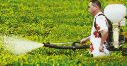 fumigador pulverizador a nafta forest&garden 20 l pg843-1