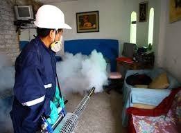fumigadora cero plagas toner 809-433-3322