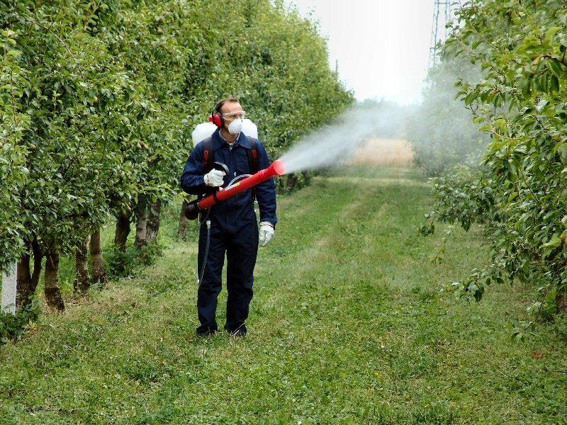 Resultado de imagen para fumigadora de agricultura