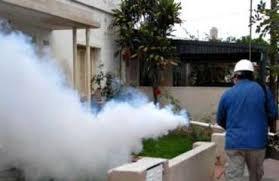 fumigadora  setrons- tele-whasap. 809-433-3322 849-296-4455