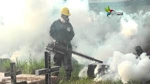 fumigadora  troy- tele-whasap. 809-433-3322 849- 296-4455