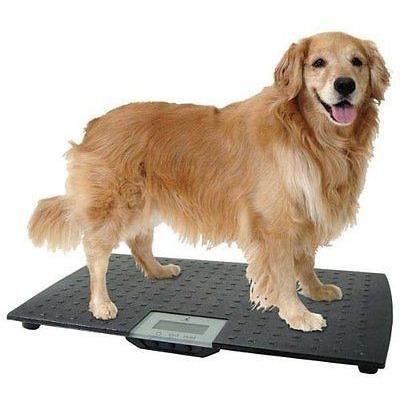funcional báscula para mascotas perros gatos w.c. redmon