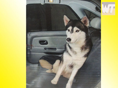 funda impermeable de asiento auto para mascotas full
