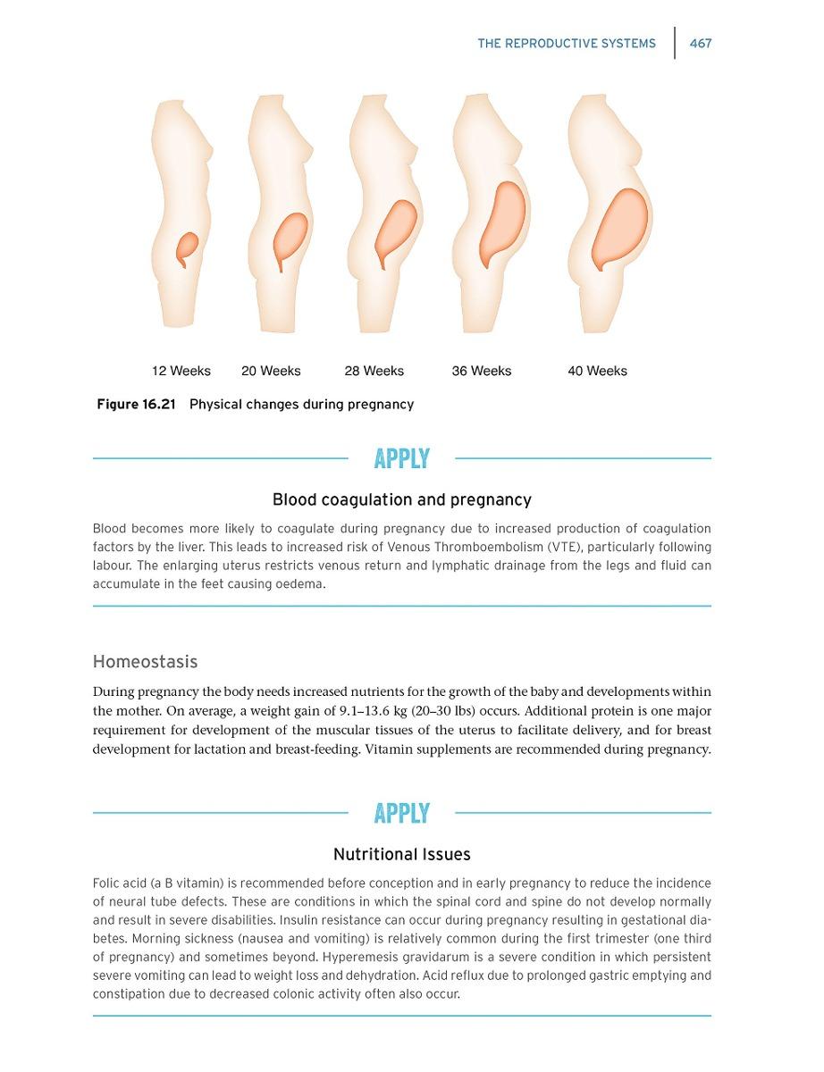 Fundamentos De Anatomía Y Fisiología Para La Práctica De Enf ...
