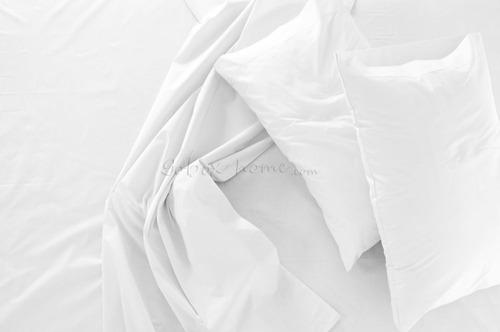 fundas standar blancas hoteleras 180 hilos premier 80 x 50