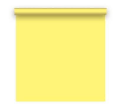 fundo fotografico colorido semi novo amarelo