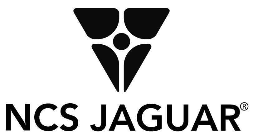 gabinetes 19 pulgadas jaguar equipos de telecom