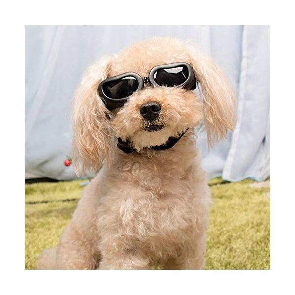 a70aa299b0 Gafas De Sol Para Perros, En La Mano De Protección Uv Gafas ...