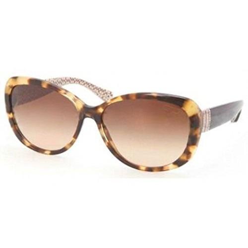Gafas Entrenador Sunglasses Hc 8040b Habana 5047/13 Hc8040b ...