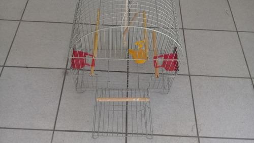 gaiola aramada para calopsita com acessórios
