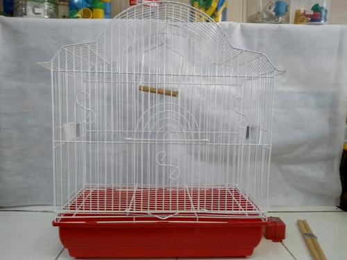gaiola canario periquito agapornis passaros cor vermelha