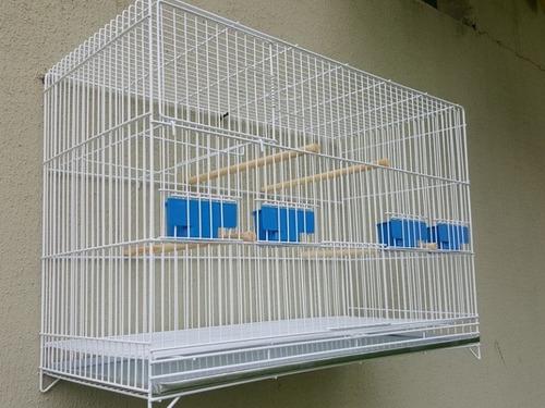 gaiola criadeira (periquito ingles e agapornis)