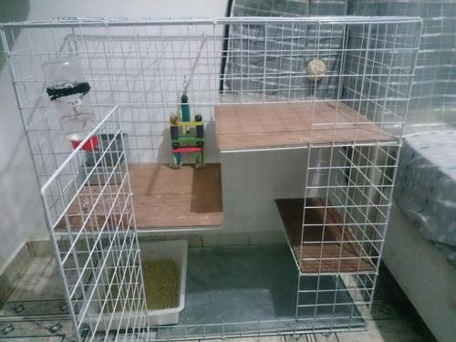 gaiola para coelho