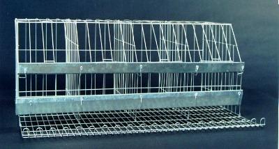 Venda de gaiolas para galinhas poedeiras