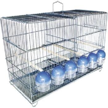 gaiola para reproduzir canários passarinhos tarin pintasilgo